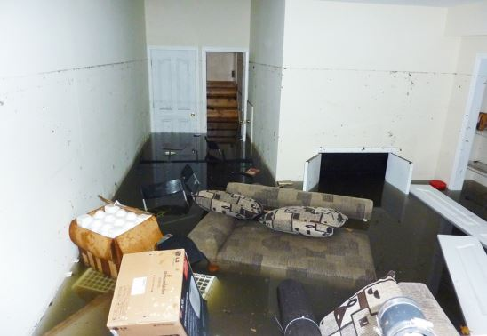 Things That a Mold Test Will Tell You After Flooding Happens