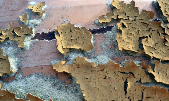 Three Reasons To Test For And Remove Lead Paint Right Away