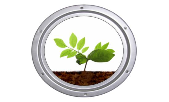 Stop Guessing! Start Testing Your Soil.