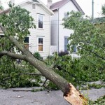 Am I Required to Carry Windstorm Insurance?
