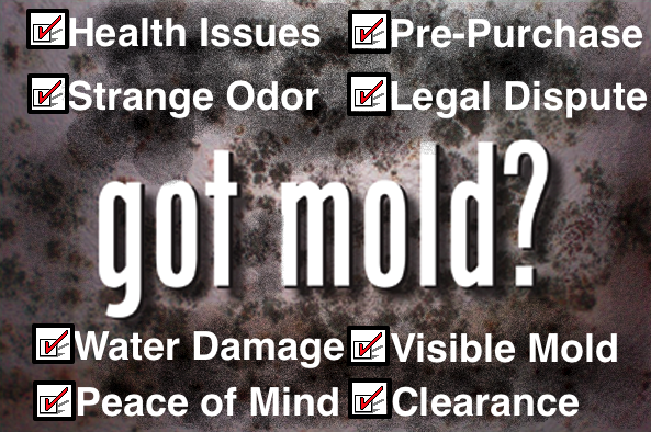 Dallas Mold Testing